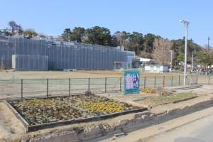 140417 ⑥完成した花壇2014-04-02 15.44.40